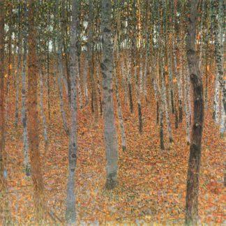 klimt: Beech grove, 1902